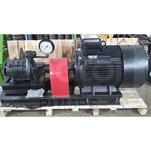 Long Coupled Electric Pump