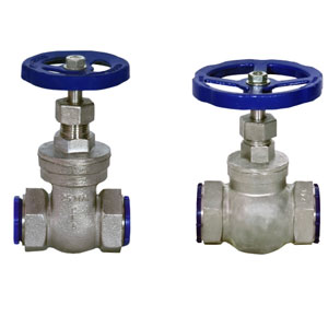 Investment Casting Globe Valves / Gate Valve